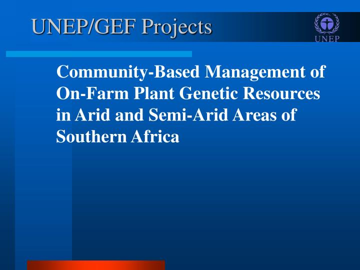 UNEP/GEF Projects