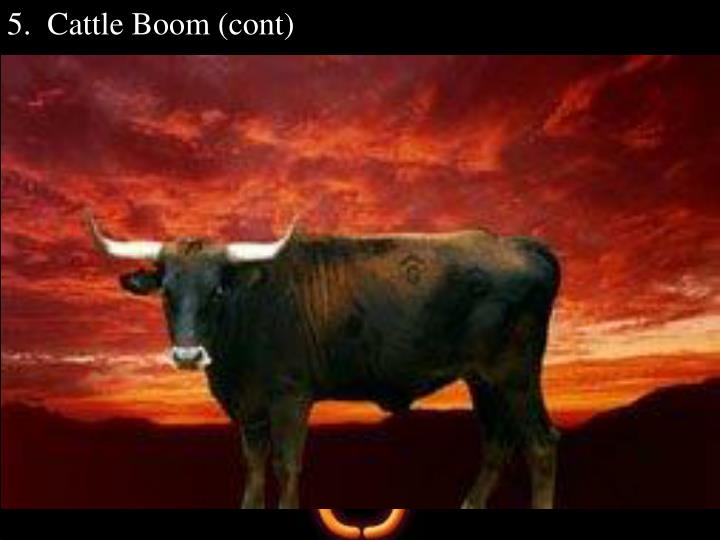 5.  Cattle Boom (cont)