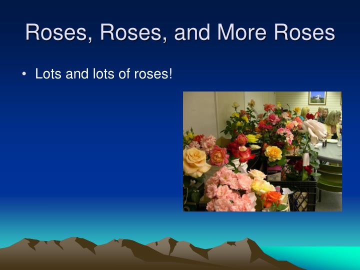 Roses, Roses, and More Roses