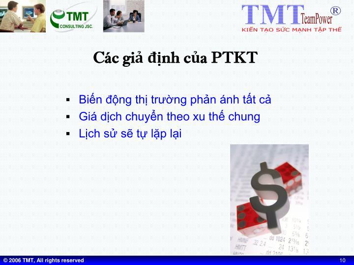 Các giả định của PTKT
