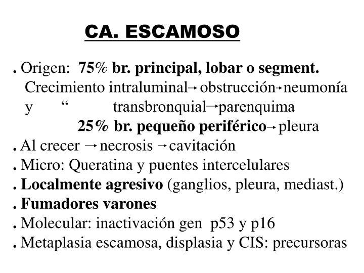 CA. ESCAMOSO