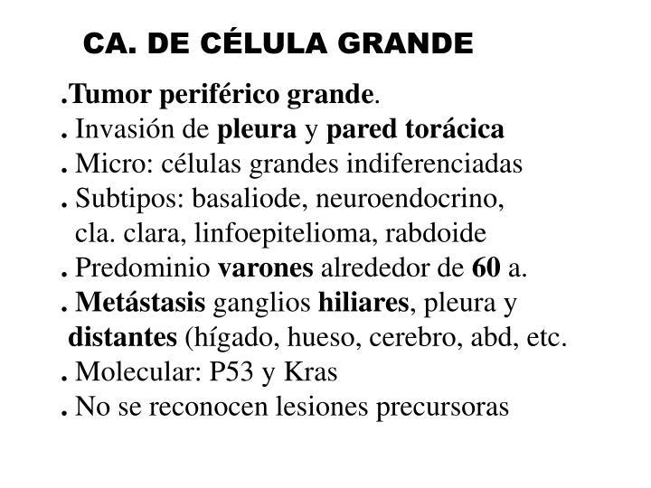 CA. DE CÉLULA GRANDE