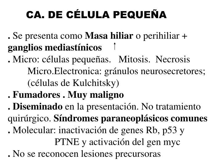 CA. DE CÉLULA PEQUEÑA