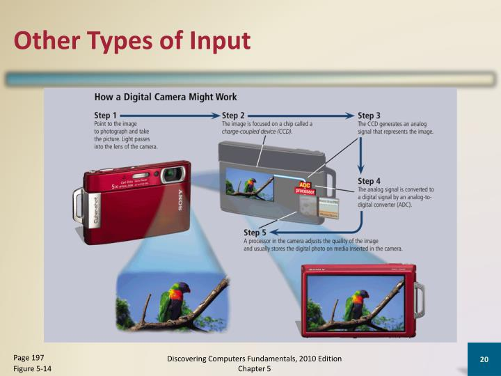 Other Types of Input