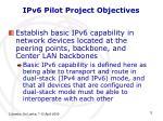 ipv6 pilot project objectives