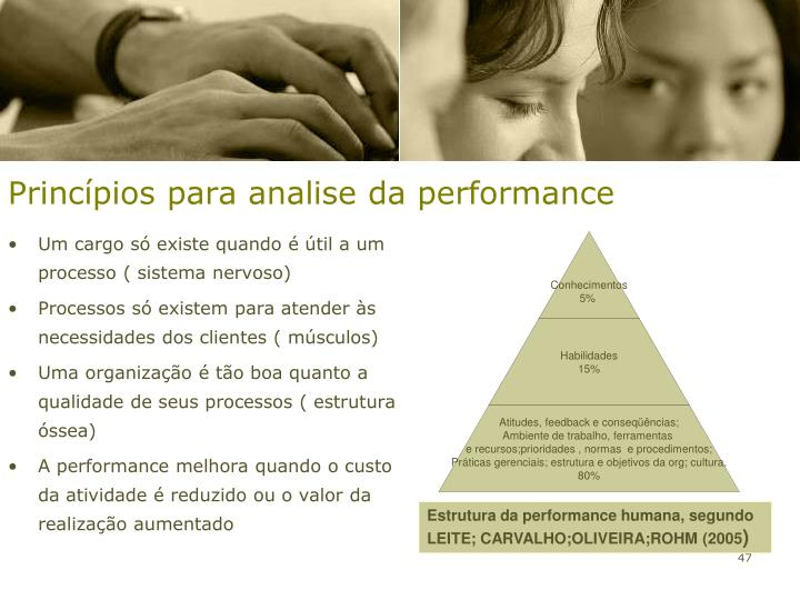 Princípios para analise da performance
