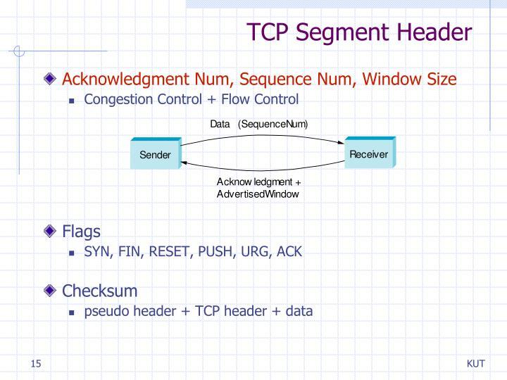 TCP Segment Header