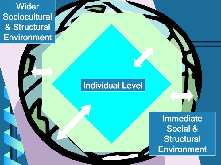 Wider Sociocultural