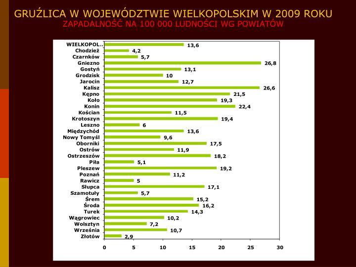 GRUŹLICA W WOJEWÓDZTWIE WIELKOPOLSKIM W 2009 ROKU
