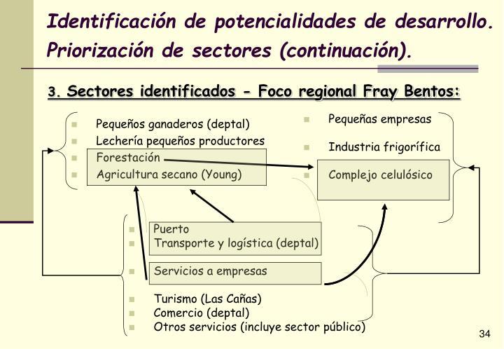 Identificación de potencialidades de desarrollo. Priorización de sectores (continuación).