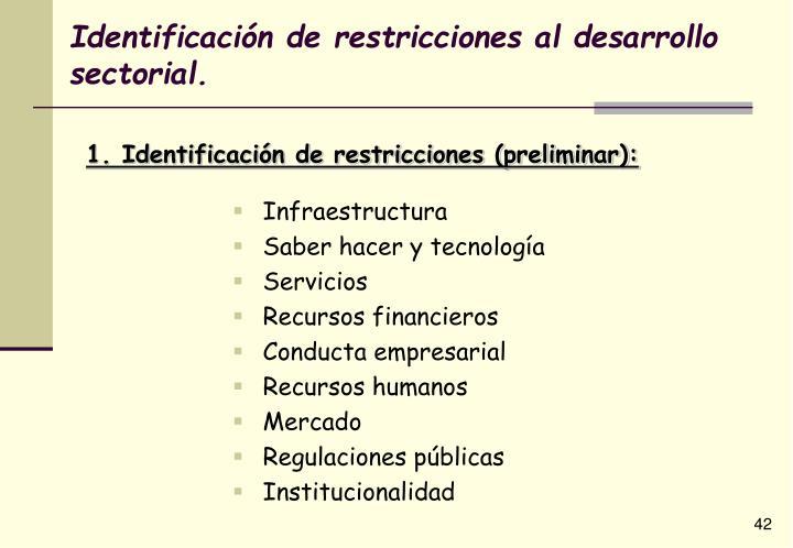 Identificación de restricciones al desarrollo sectorial.