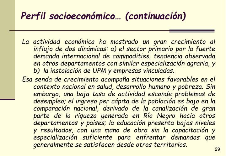 Perfil socioeconómico… (continuación)