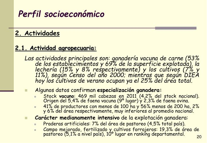 Perfil socioeconómico