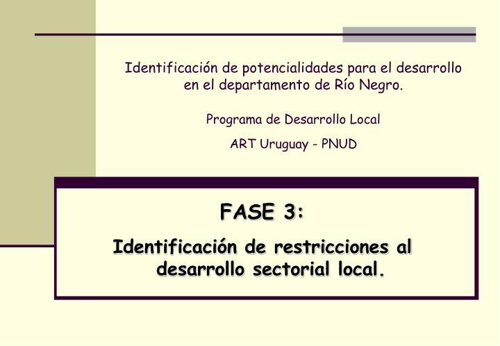 Identificación de potencialidades para el desarrollo en el departamento de Río Negro.