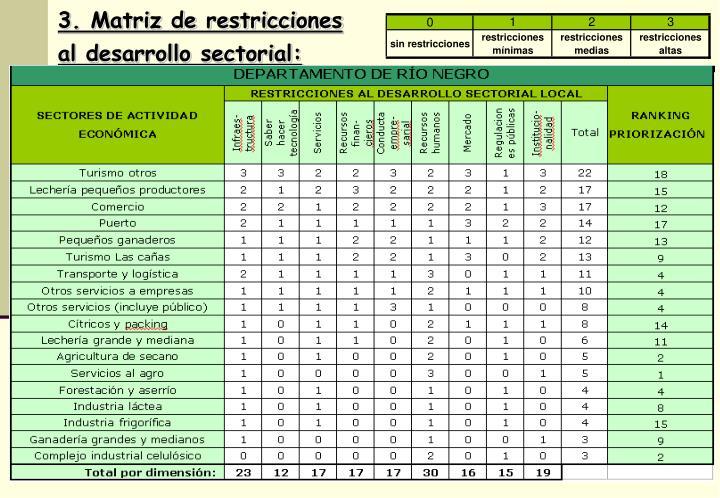 3. Matriz de restricciones