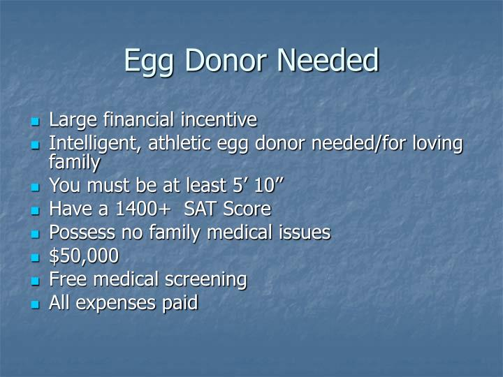 Egg Donor Needed