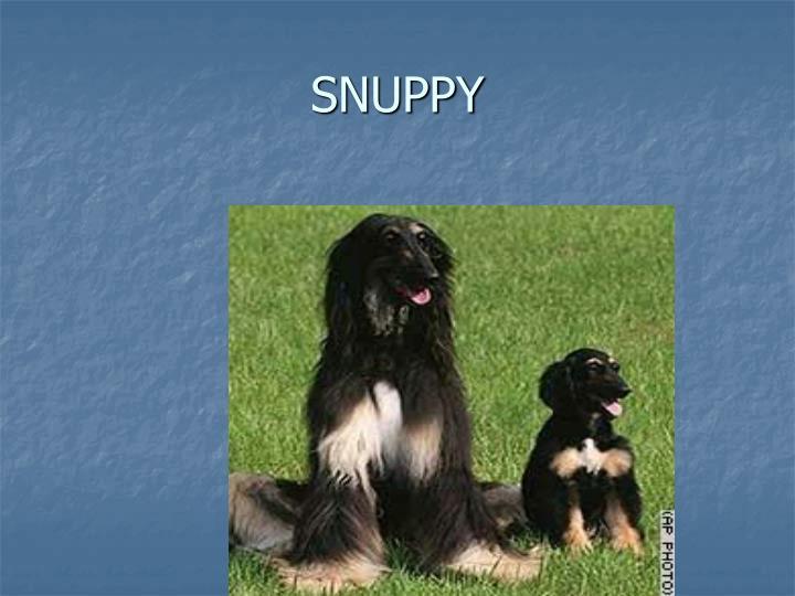 SNUPPY