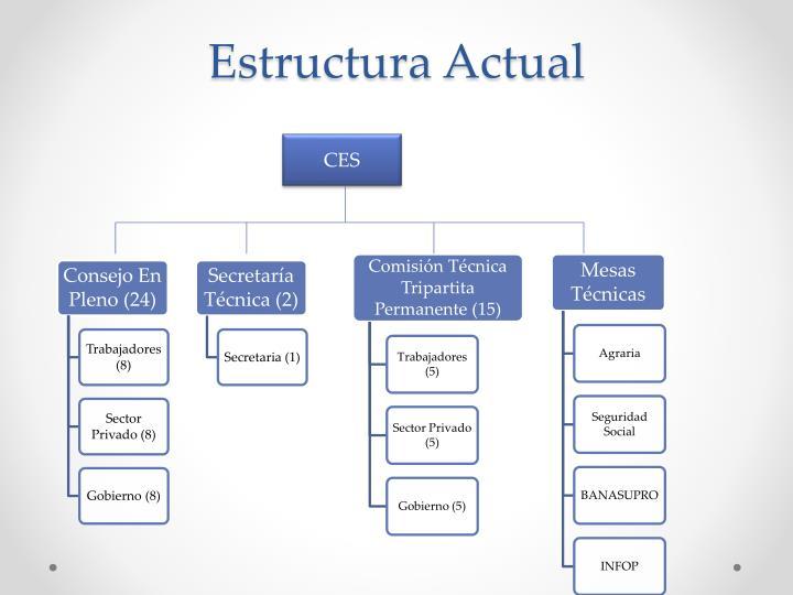Estructura Actual