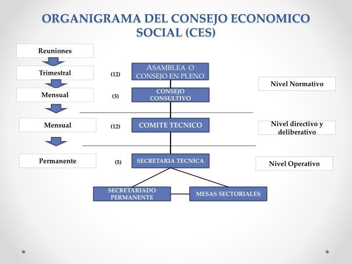 ORGANIGRAMA DEL CONSEJO ECONOMICO SOCIAL (CES)