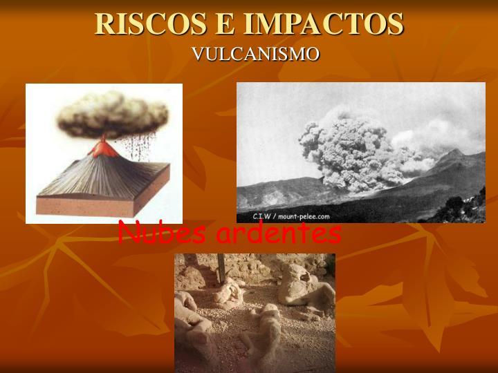 RISCOS E IMPACTOS