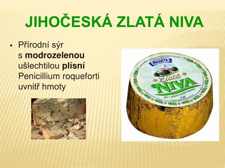 Přírodní sýr                  s