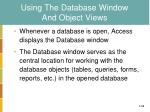 using the database window and object views