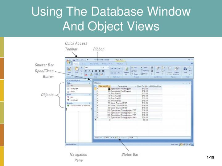 Using The Database Window