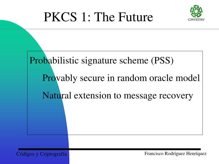 Probabilistic signature scheme (PSS)