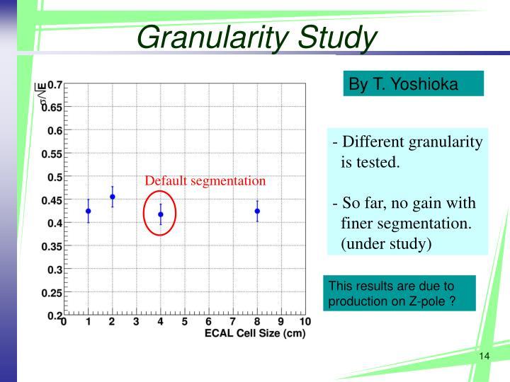Granularity Study