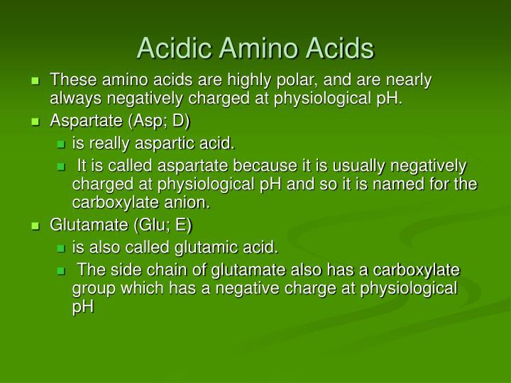Acidic Amino Acids