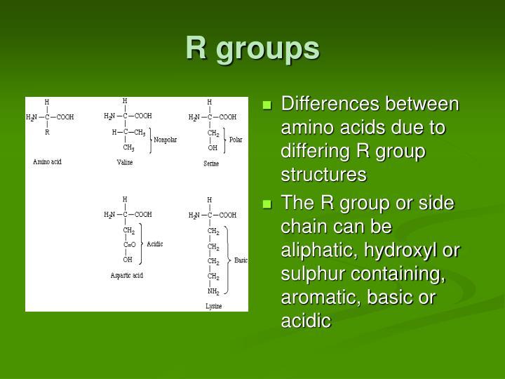 R groups