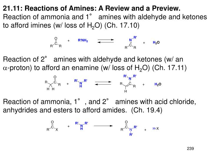 21.11: Reactions of Amines: A Review and a Preview.