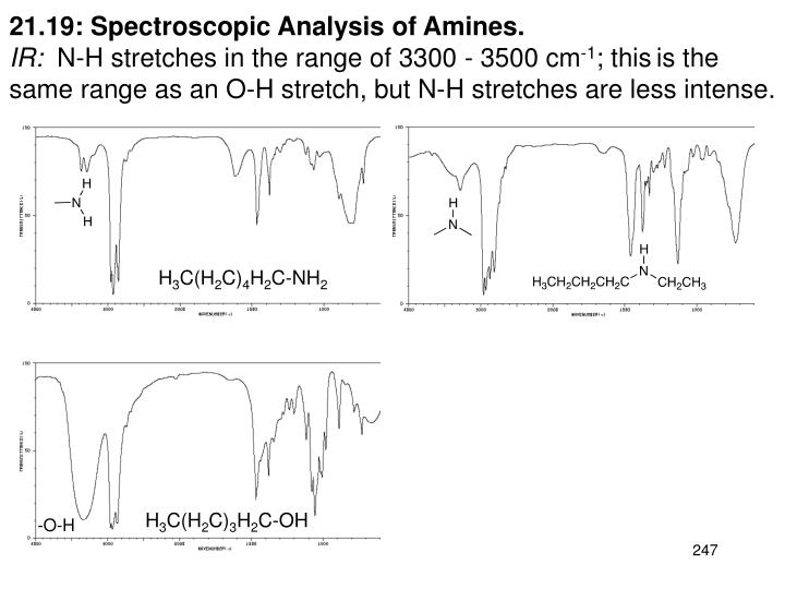 21.19: Spectroscopic Analysis of Amines.