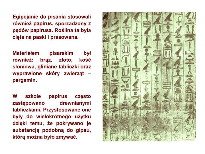 Egipcjanie do pisania stosowali również papirus, sporządzony z pędów papirusa. Roślina ta była cięta na paski i prasowana.