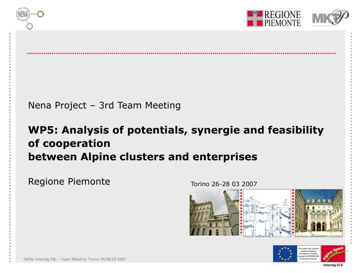 Nena Project – 3rd Team Meeting