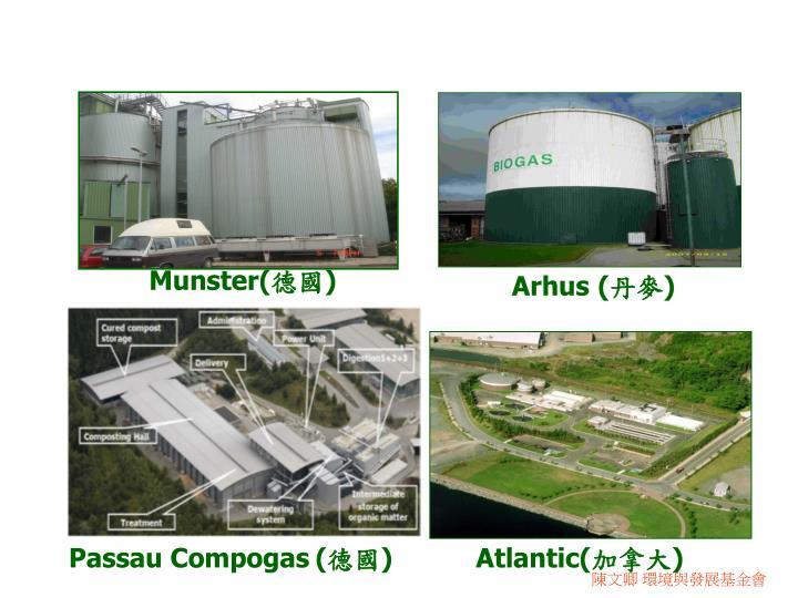 Munster(