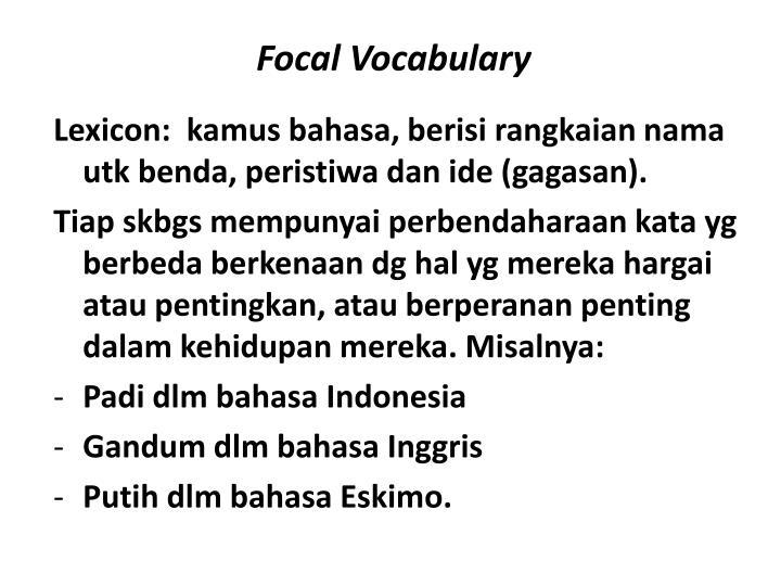 Focal Vocabulary