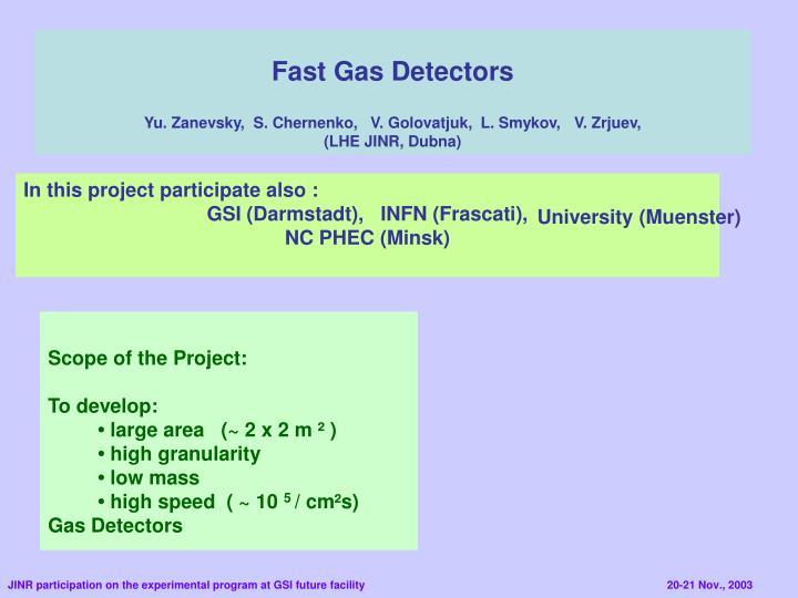 Fast Gas Detectors