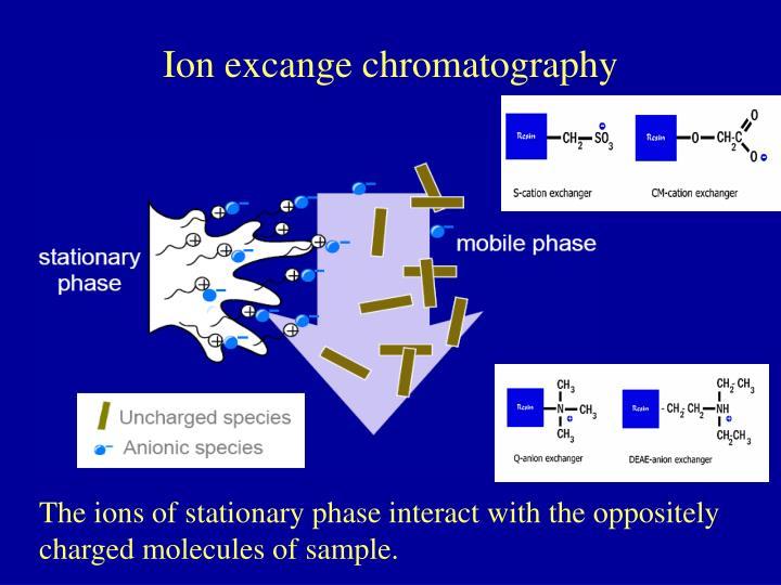 Ion excange chromatography