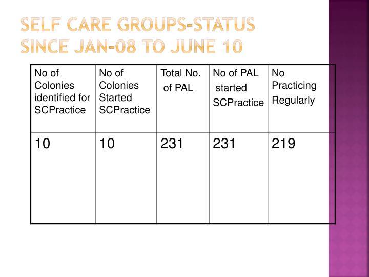 Self Care Groups-Status