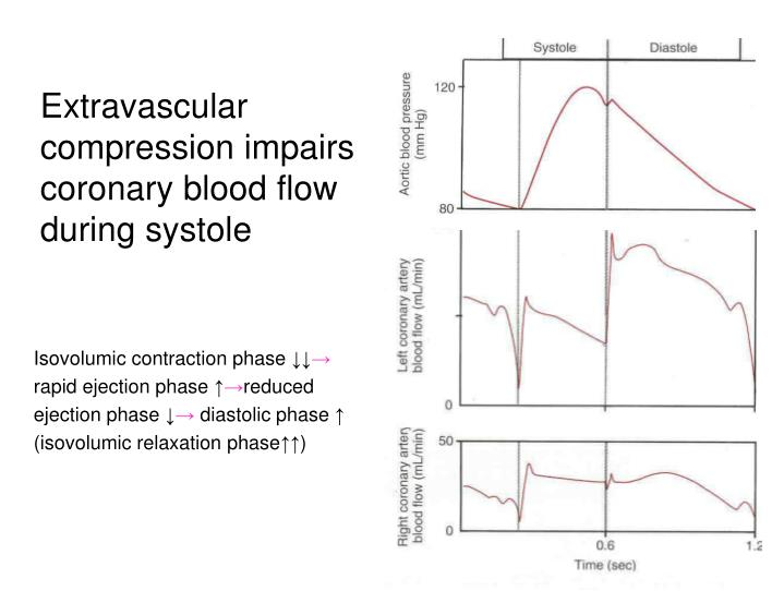 Extravascular compression impairs coronary blood flow during systole