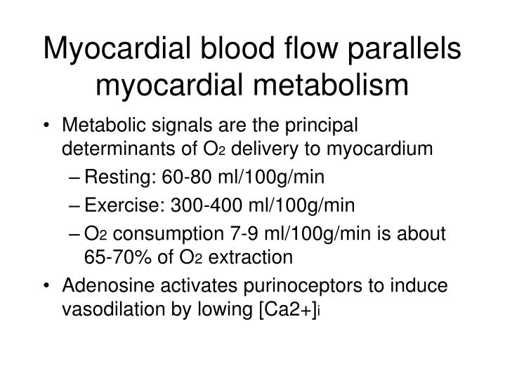 Myocardial blood flow parallels myocardial metabolism