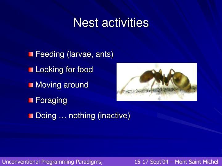 Nest activities