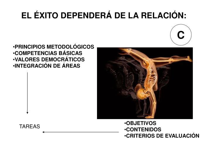 EL ÉXITO DEPENDERÁ DE LA RELACIÓN: