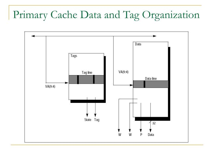 Primary Cache Data and Tag Organization