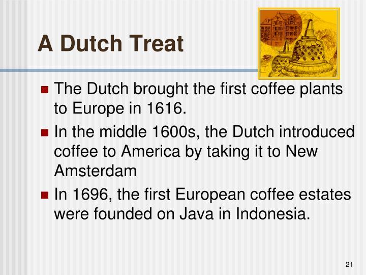 A Dutch Treat