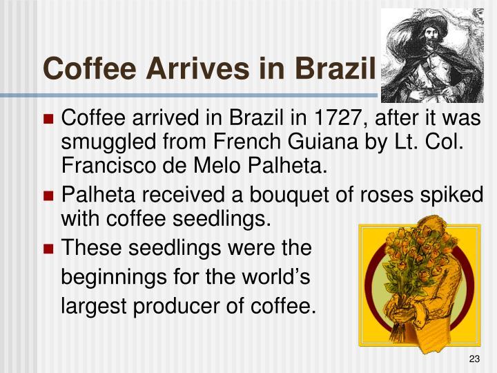 Coffee Arrives in Brazil