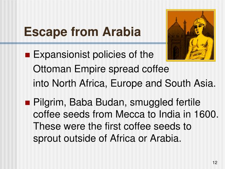 Escape from Arabia