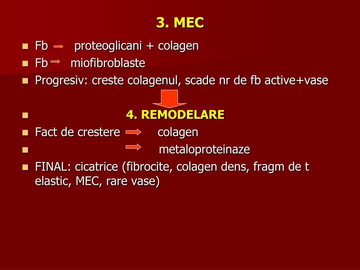 3. MEC