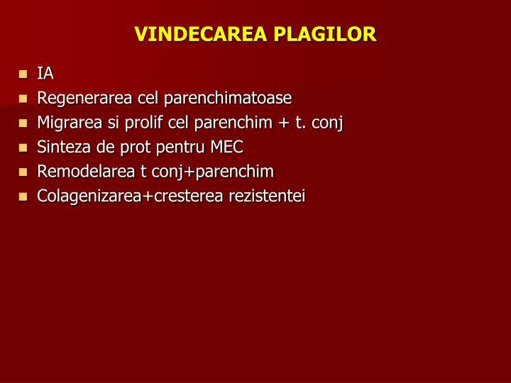 VINDECAREA PLAGILOR